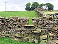 Stile on footpath from Bradley to Moor Gate - geograph.org.uk - 473219.jpg