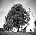 Stolp z lipo. Cerkev sv. Štefana v Smrjenih 1948.jpg