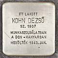 Stolperstein für Dezsö Kohn (Szeged).jpg