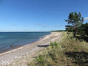 Strand på Gotska Sandön.jpg