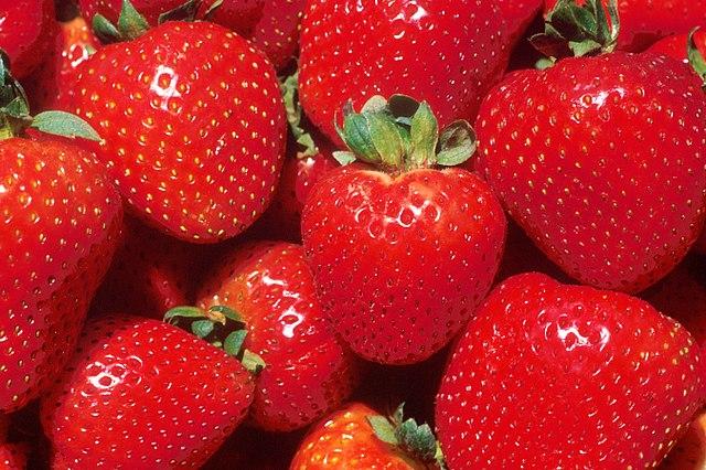Plodstvo nažiek jahody