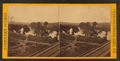 Strawberry plains, and the R.R. Bridge, 15 miles above Knoxville, Tenn, by E. & H.T. Anthony (Firm).png