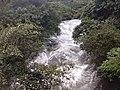 Stream flowing in Valparai Nature of Valparai IMG 20180714 173415965 BURST000 COVER TOP.jpg