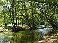 Strumeshnitsa-river-1.jpg