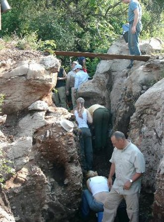 Motsetsi - Students digging in the main excavation at Motsetse Cave. Peter Schmid, long-time collaborator is in the foreground.