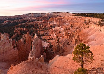 Sunrise Point Bryce Canyon November 2018 002.jpg