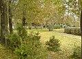Tabriz university.jpg