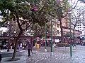 TaiPo TaiMingLaneSquare4.jpg
