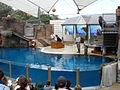 Taronga Zoo (6182492184).jpg