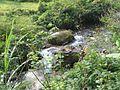 Tawangmangu 2009 Bennylin 090.jpg