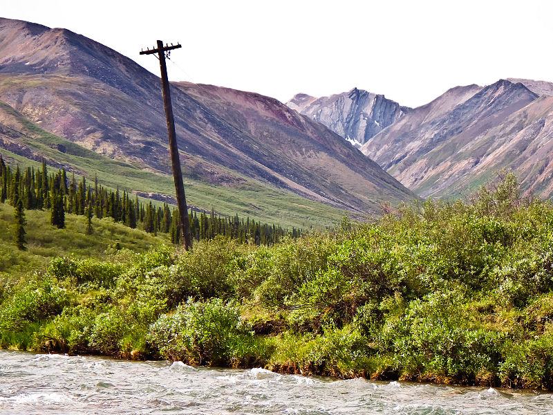 File:Telegraph Pole on the Canol Heritage Trail.jpg