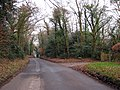 Telham Lane - geograph.org.uk - 1102041.jpg