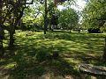 The Alice Graham Smith House Rear Garden and Pecan Grove.jpg