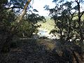 The Beauty of an Australian Entrance, Nature's greatest world-class vista.jpg