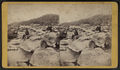 The Mohawk, when the water is low, Little Falls, N.Y, from Robert N. Dennis collection of stereoscopic views.png