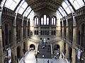 The Natural History Museum, London - DSCF0390.JPG