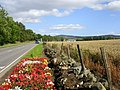 The Road to Alford - geograph.org.uk - 288300.jpg