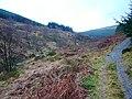 The Wye Valley Walk beside Afon Hore - geograph.org.uk - 1153731.jpg