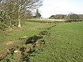 The north defensive ditch of Hadrian's Wall west of Planetrees - geograph.org.uk - 1246675.jpg