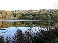 The settling pool at Trimpley Reservoir - geograph.org.uk - 1577191.jpg