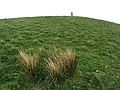 The trig point on Big Morton Hill - geograph.org.uk - 424297.jpg