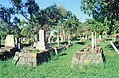Thursday Island Cemetery Japanese Graves (section A) (2001).jpg