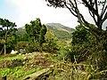 Tianweihu 田尾湖 - panoramio.jpg