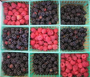 Punnets of blackberries and raspberries.