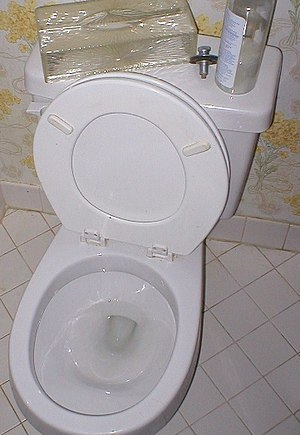A toilet with the potentially dangerous arrang...