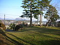 Tomigaoka Park2.JPG