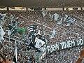 Torcida do Botafogo (Final Taça GB09) 04.JPG