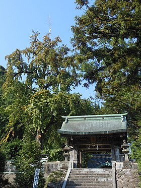 Tower gate and sacred ginkyo tree at Ayabe Hachiman Shrine.jpg