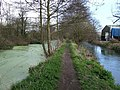 Towpath on Stroudwater Canal - geograph.org.uk - 372003.jpg