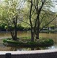 Trübes Gewässer - panoramio.jpg