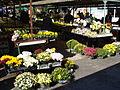 Tržnica, Čakovec - tegle s cvijećem.jpg