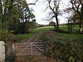 Track by Bolesbridge Water - geograph.org.uk - 608132.jpg