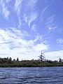 Tree, Sky (30134956).jpg