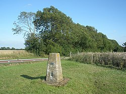 Trig point, on Dunstable Downs - geograph.org.uk - 1440937.jpg