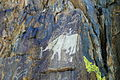 Tuva rock art.jpg