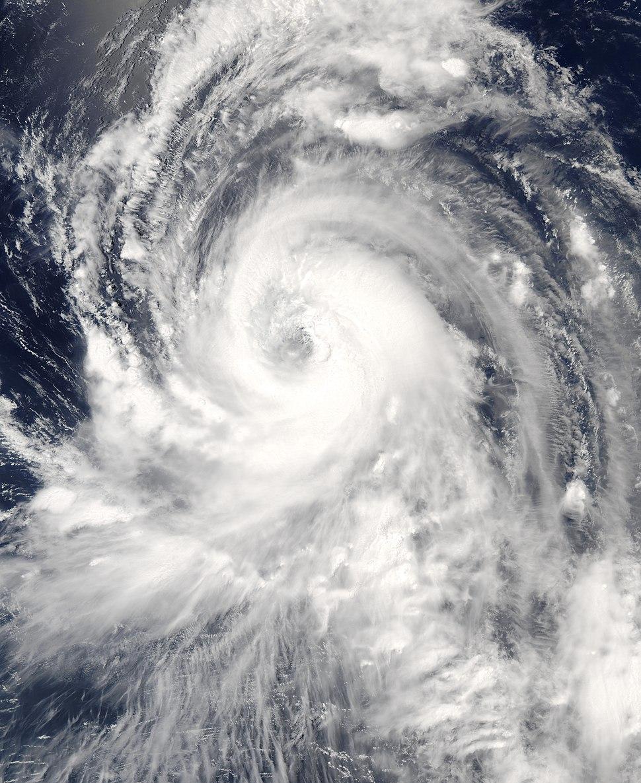 TyphoonTingting2004