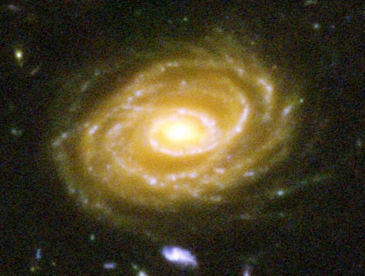 UDF423-SpiralGalaxy