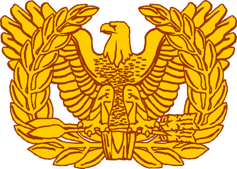 File:USA - Warrant Officer Insignia.png