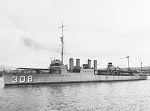 USS William Jones (DD-308) during the 1920s (NH 49966)