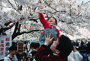 Yamato people - Image: Ueno Park Hanami