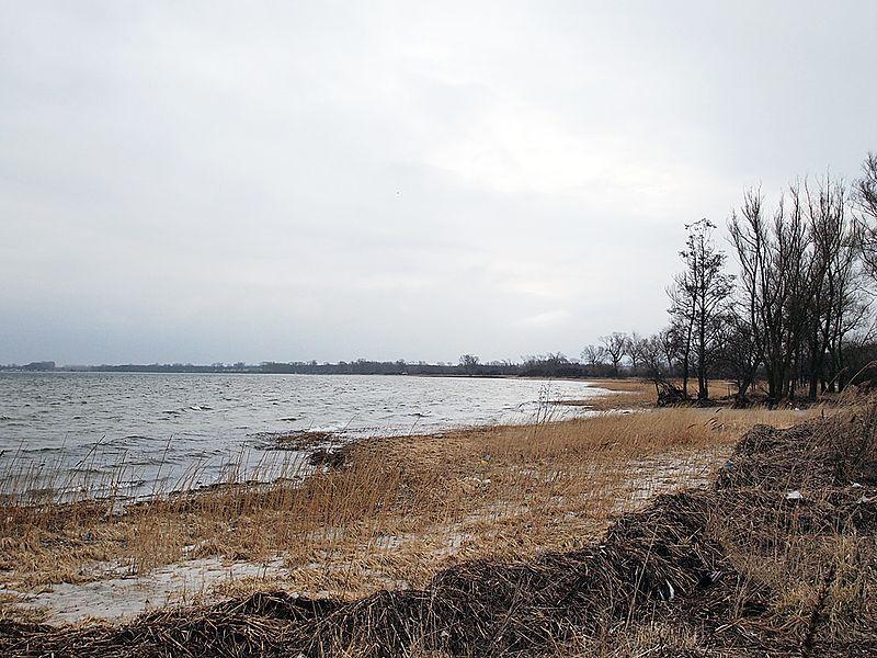 File:Ufer bei Wohlenberg im März - panoramio.jpg