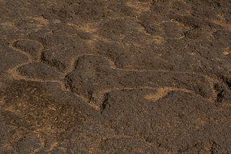Usgalimal rock engravings - Petroglyph depicting an Indian bison