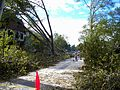 Utopia Pkwy after tornado 2010.JPG
