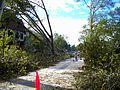 Utopia Pkwy after tornado 2010.JPG