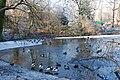 Various birds in Artis (2130904626).jpg