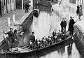 Victoria Arduino - Venice.jpg
